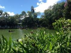 Belo Horizonte (parque municipal)